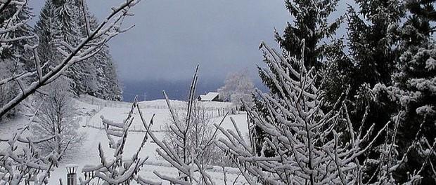 In einigen Teilen Deutschlands sieht es derzeit so oder so ähnlich aus. Zudem ist es sehr kalt. All das sind laut Wetterdienst Anzeichen für ein eher geringes Waldbrand-Risiko.