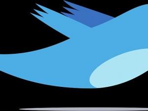 Das Markenzeichen von Twitter: der putzige blaue Vogel Larry.