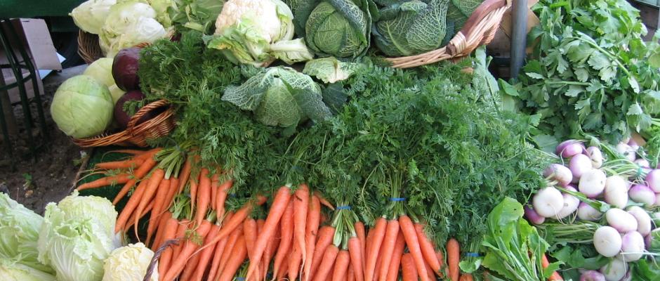 Industrie züchtet Gemüse mit Knorpeln und Sehnen, um es für Fleischesser attraktiver zu machen
