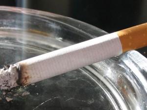 So sieht sie aus: Die erste vegane Zigarette.